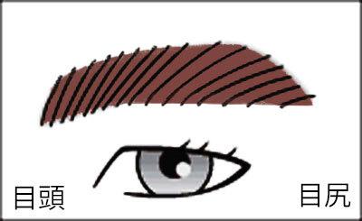 男の眉毛(平行眉)