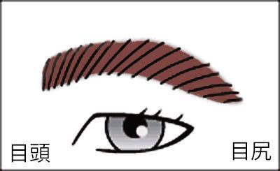 男の眉毛(下がり眉)